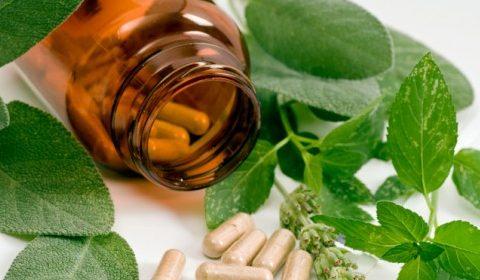 Dr  Sanja Tamburic ND – NaturopathiClinic com | Herbal